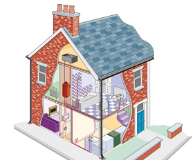 House Cutaway Technical Illustration